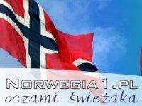 Reklama w portalu norweskim
